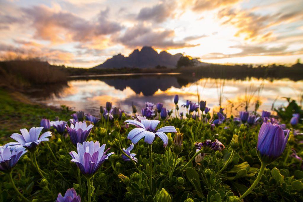 I paesaggi più belli e suggestivi del Sudafrica - Napolitan.it