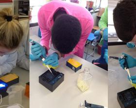 amgen-biotech-ireland-minione-4-collage