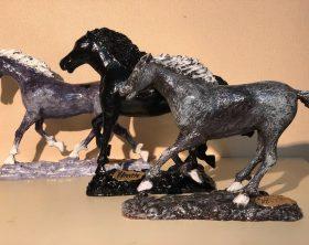 cavalli-per-la-mostra-cavalli-di-razza-di-vittorio-tirrito
