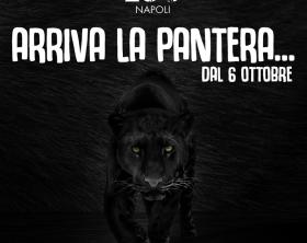pantera-zoo-di-napoli