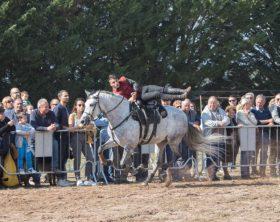 un-momento-dello-spettacolo-equestre2-foto-di-andrea-mandruzzato