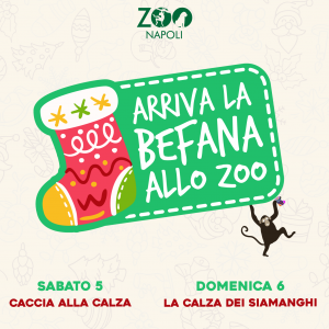 befana-allo-zoo