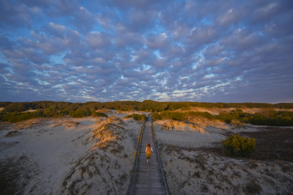 Sea Camp Boardwalk - Cumberland Island