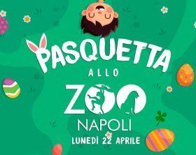 pasquetta-zoo-napoli