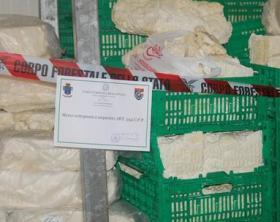 Mozzarella di bufala dop adulterata, 4 arresti nel Casertano.