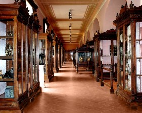 Museo Anatomico