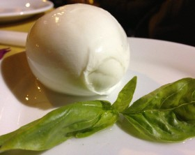 bufala-buffalo-mozzarella-rome-cheese