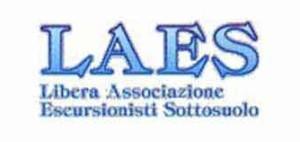 logo_laes_resize