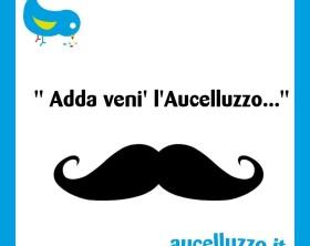 aucelluzzo39