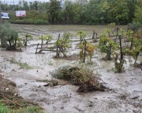 alluvione-benevento-campagne-770x513