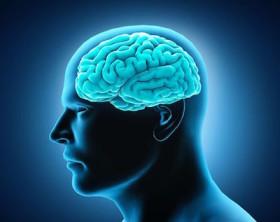 Accompagnamento-dell-Inps-anche-per-patologie-neurologiche