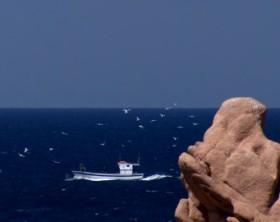 993924388-cutter-nave-sardegna-pesca-attivita-pescatore