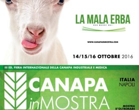 Canapa in Mostra 2016