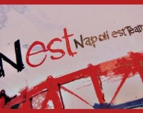 nest6-300x225