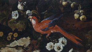 paolo-porpora-sottobosco-con-fiori-e-uccelli