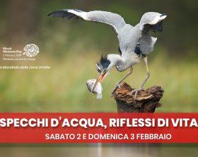 specchi-d-acqua_specchi-di-vita_-2-e-3-febbraio-2019-a-citta-della-scienza_ita