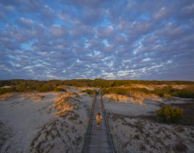Sea Camp Boardwalk - Cumberland Island