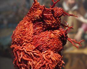 jan-fabre_oro-rosso_museo-e-real-bosco-di-capodimonte_6930