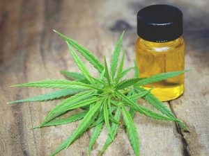 732x549_thumbnail_cbd_oil_for_anxiety