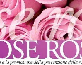 rose-rosa-banner-slider
