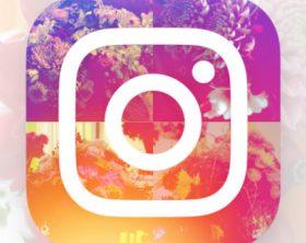 instagram-702x336
