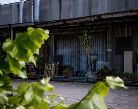 Napoli 05-05-2020 Covid e crisi, Antonio Nogara imprenditore suicida a Napoli. Il dolore di Conte: «Sono vicino alla famiglia» nella foto la sua bottega in via Pazziano nel quartiere a San Giovanni  (Newfotosud Alessandro Garofalo)
