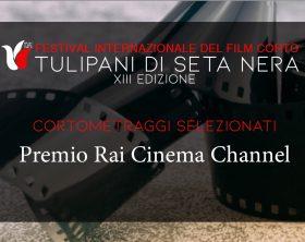 premio-rai-cinema-channel