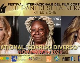 nomination-international-sorriso-diverso-award