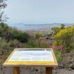 sentieri-del-parco-nazionale-del-vesuvio-il-fiume-di-lava-05-768x576