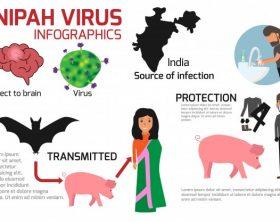 nipah-virus-infographics_27170-78