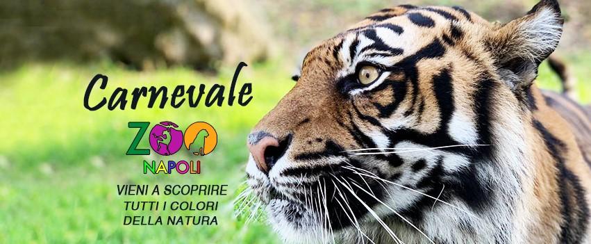 carnevale-allo-zoo