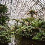 la-natura-urbana-di-michael-kors-la-collezione-primavera-estate-2021