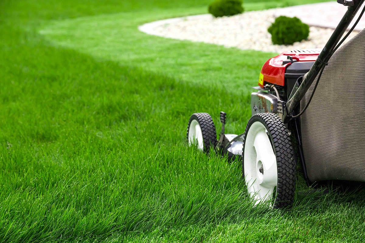 manutenzione-giardini