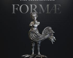 formae-copertina