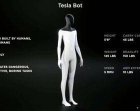 tesla-bot-180764-1200x675